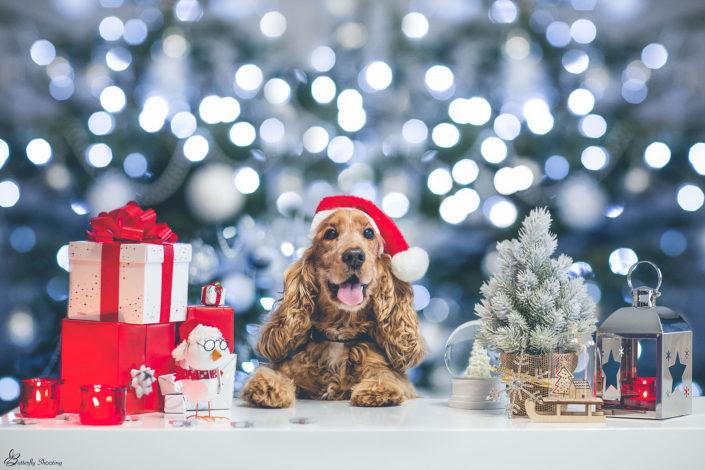 Noël, Christmas