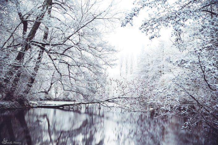 Neige, Snow